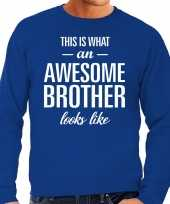 Awesome brother broer cadeau sweater blauw heren trend