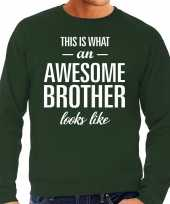 Awesome brother broer cadeau sweater groen heren trend