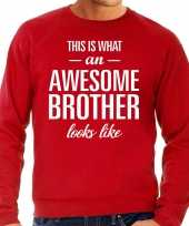 Awesome brother broer cadeau sweater rood heren trend