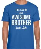 Awesome brother tekst t-shirt blauw heren trend