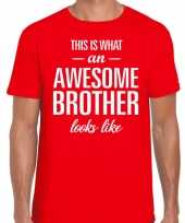 Awesome brother tekst t-shirt rood heren trend