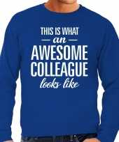 Awesome colleague collega cadeau sweater blauw heren trend