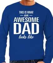 Awesome dad cadeau sweater blauw heren vaderdag cadeau trend