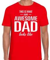Awesome dad cadeau t-shirt rood heren vaderdag cadeau trend