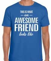Awesome friend cadeau t-shirt blauw heren trend
