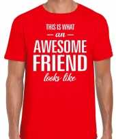 Awesome friend cadeau t-shirt rood heren trend