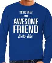 Awesome friend vriend cadeau sweater blauw heren trend