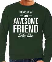Awesome friend vriend cadeau sweater groen heren trend