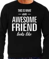Awesome friend vriend cadeau sweater zwart heren trend