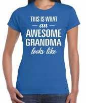 Awesome grandma oma cadeau t-shirt blauw dames trend