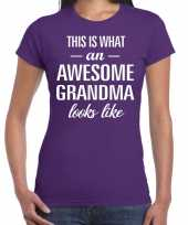 Awesome grandma oma cadeau t-shirt paars dames trend