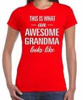 Awesome grandma oma cadeau t-shirt rood dames trend
