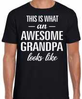 Awesome grandpa opa cadeau t-shirt zwart heren vaderdag trend