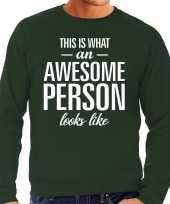 Awesome person persoon cadeau sweater groen heren trend