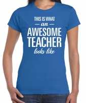 Awesome teacher cadeau juffendag t-shirt blauw dames trend