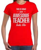 Awesome teacher cadeau juffendag t-shirt rood dames trend