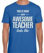 Awesome teacher cadeau meesterdag t-shirt blauw heren trend