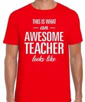 Awesome teacher cadeau meesterdag t-shirt rood heren trend