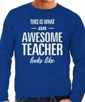 Awesome teacher leraar cadeau sweater blauw heren trend