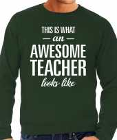 Awesome teacher leraar cadeau sweater groen heren trend