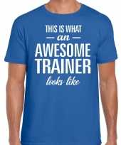 Awesome trainer cadeau t-shirt blauw voor heren trend