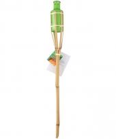 Bamboe tuinfakkel groen 60 cm trend