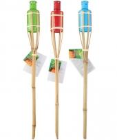 Bamboe tuinfakkel set 3 stuks 60 cm type 2 trend
