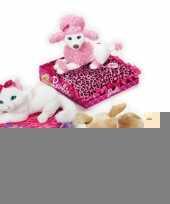 Barbie knuffel chihuahua op kussen trend