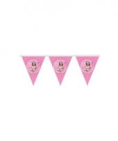 Barbie vlaggetjeslijn 3 meter trend