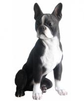 Beeld grijze boston terrier 41 cm trend