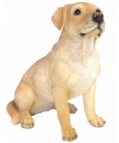 Beeld wittte labrador 40 cm trend