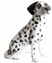 Beeld zittende dalmatier hond 51 cm trend
