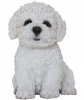 Beeldje bichon frise hondje 15 cm trend