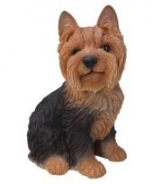 Beeldje bruin yorkshire hondje 23 cm trend