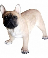 Beeldje franse bulldog hondje 35 cm trend