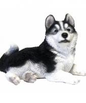 Beeldje liggende husky hond 20 cm trend