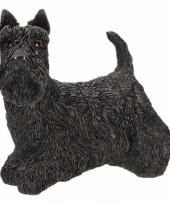 Beeldje schotse terrier 13 cm trend
