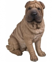Beeldje sharpei hondje 55 cm trend