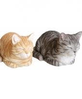 Beeldje slapende rode kat 34 cm trend