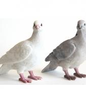 Beeldje witte duif 20 cm trend