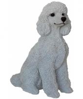 Beeldje witte poedel hondje 32 cm trend