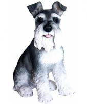 Beeldje zwart witte schnauzer hondje 33 cm trend