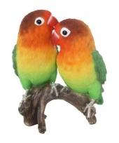 Beeldjes lovebirds vogeltjes 38 cm trend