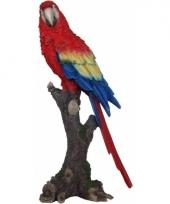 Beeldjes papegaai vogeltjes 38 cm trend