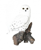 Beeldjes sneeuwuil vogeltjes 32 cm trend