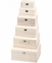 Blanco opbergkistje van hout 16 5 cm trend
