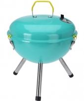 Briketten barbecue mintgroen 28 cm rond trend