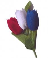 Broche met drie nederlandse tulpen trend