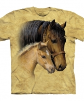 Bruin dieren t-shirt paarden voor kinderen trend
