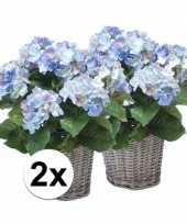 Buiten kunstplant blauwe hortensia 45 cm 2 stuks trend